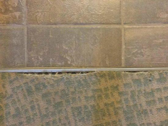 Loews Royal Pacific Resort at Universal Orlando : Carpet in suite