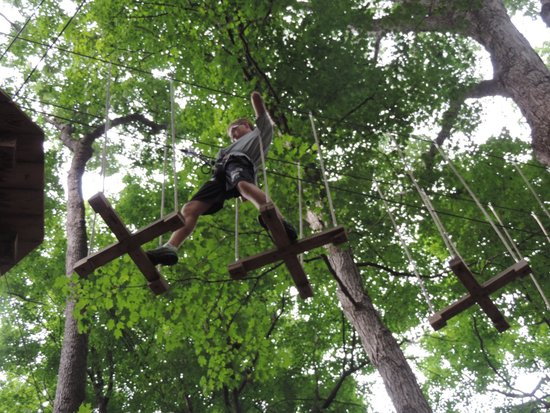 Go Ape Treetop Adventure Course : My 16 year old going across a section.