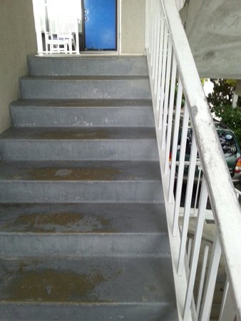 Barefoot Mailman: Steps  and dirty railing badly in need of paint!