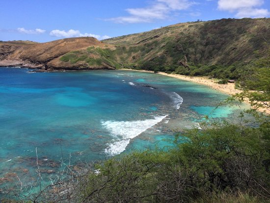 Hanauma Bay Nature Preserve: This is an image of a rough day. The water was not clear on the day.