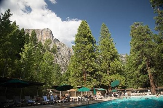 Yosemite Valley Lodge : view from pool
