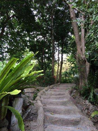 Koh Tao Royal Resort: Stairs to bungalows
