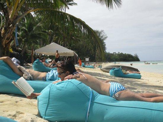 Pacific Resort Rarotonga : Beach & loungers