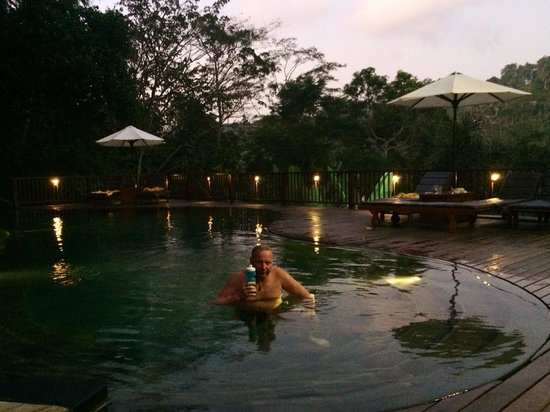 Nandini Jungle Resort & Spa: Poolen