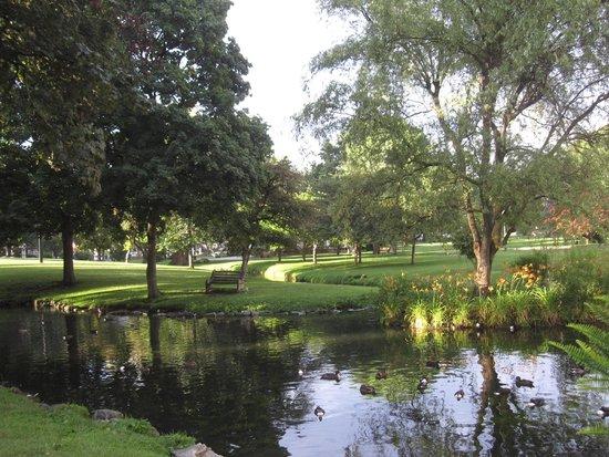 The Brunswick at Saratoga : Park downtown