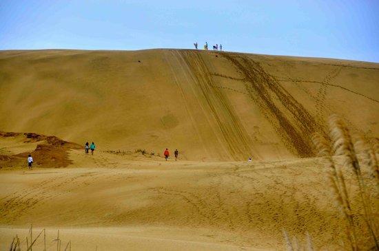 Ninety Mile Beach: Long walk up the sand dune