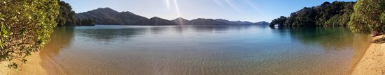 Queen Charlotte Sound : Little beach on Queen Charlotte Drive, signposted