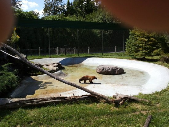 New York State Zoo at Thompson Park : New York State Zoo in Thompson Park, Watertown, NY