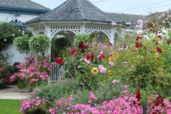 Mill Rose Inn: August Delights