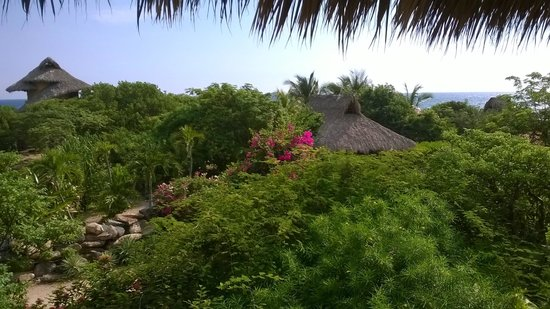 Troncones Point Hostel: view from open kitchen