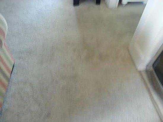 Mar Vista Grande: Flithy black carpet in living room