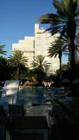 The Raleigh Miami Beach: The Beautiful Morning View of The Pool Area