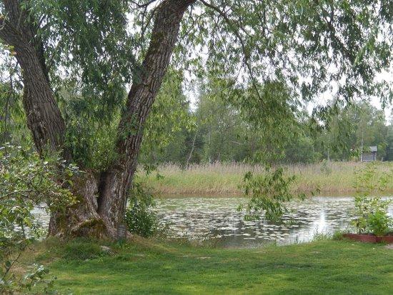 Carl Larsson House: Carl Larsson garden