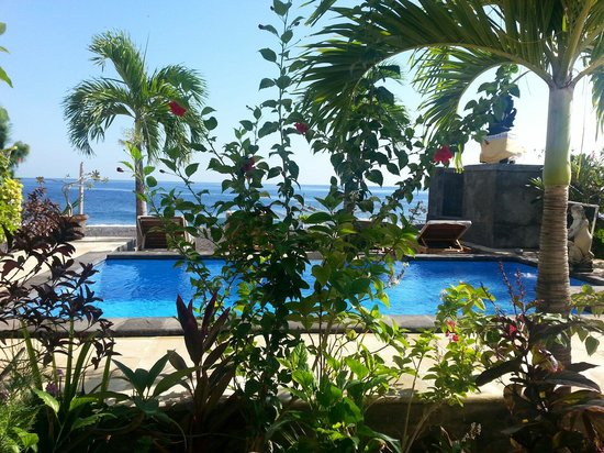 Lucky Paradise Bungalows: View from my room