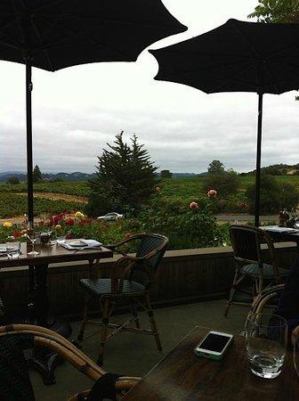 Coppola Winery Restaurant
