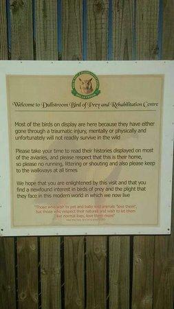 Dullstroom Bird Of Prey & Rehabilitation Centre : dullstroom bird of prey centre
