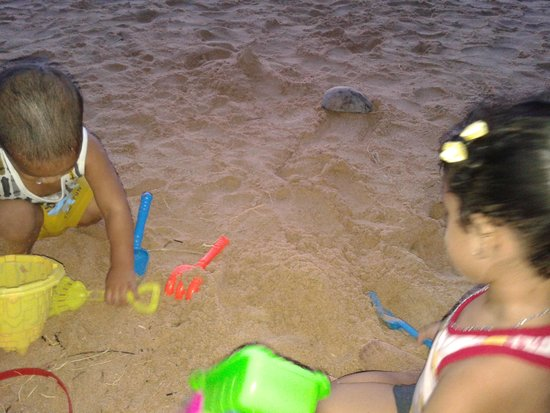 Heritance Ahungalla: kids playing on the beach