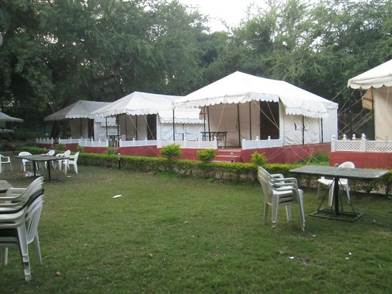 The Aravali Tent Resort: Tent with Landscaping