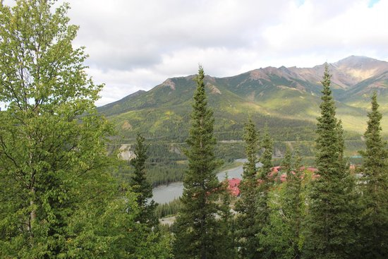 Grande Denali Lodge: View from deck outside cabin