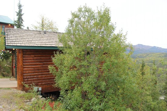 Grande Denali Lodge: Side view of cabin