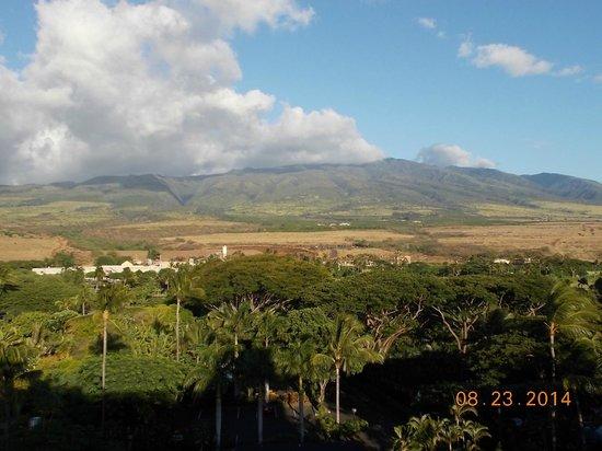 Maui Kai: Beach area outside our room
