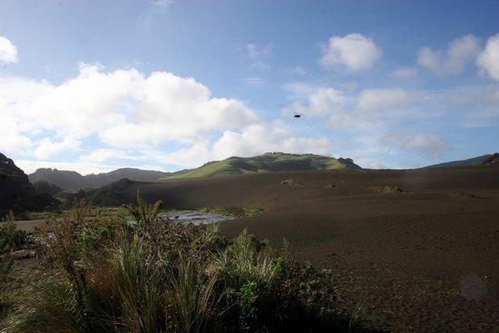 Waitakere Ranges : black sand dunes at Lake Wainamu