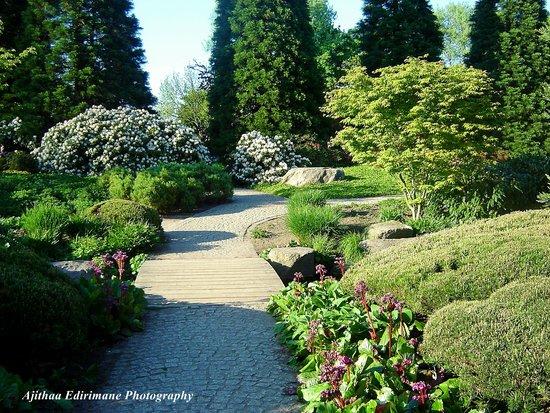 Parque Planten un Blomen: Hamburg Botanical Gardens