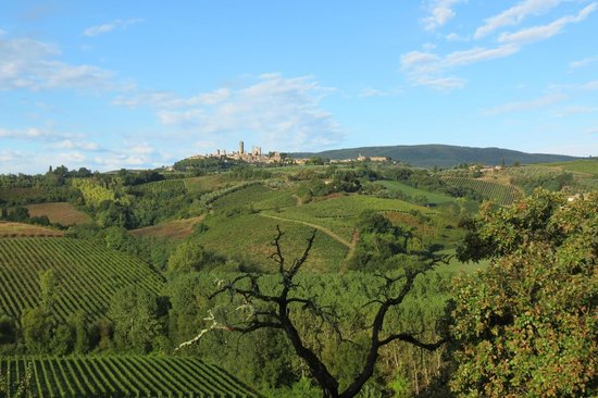 Agriturismo La Lucciolaia: view of San Gimignano from agriturismo