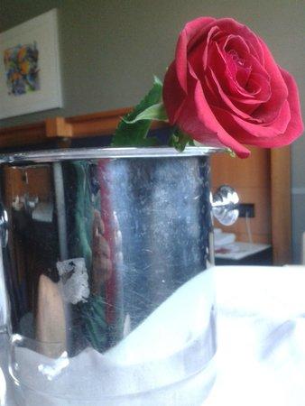 Hotel Miro : Una rosa y champán en el pack romántico