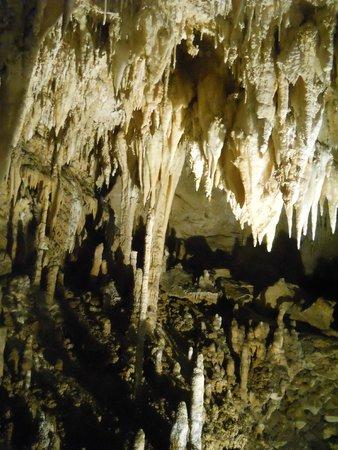 Grotta Turistica Antro del Corchia: Stalattiti