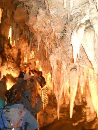 Grotta Turistica Antro del Corchia: stalattiti e stalagmiti