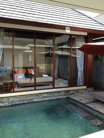 Umae Villa: View from villa doorway