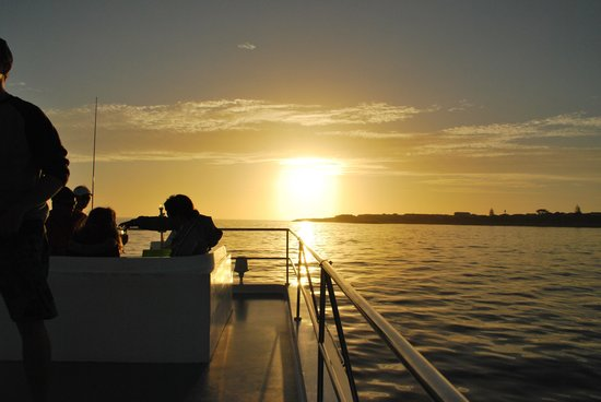 Whale Watchers Hermanus: Sunset on the cruise.