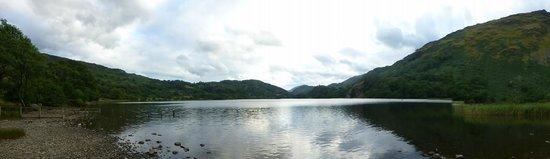 Llyn Gwynant Campsite: Lake