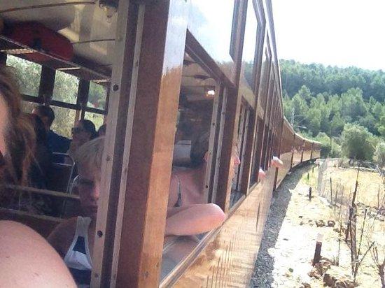 Tren De Soller: the train