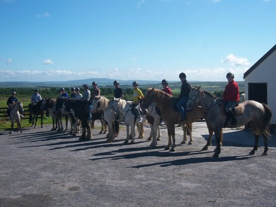 Mountain View Horse Riding Centre