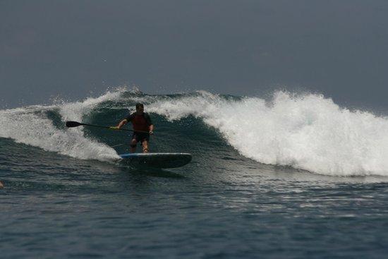 COMO Maalifushi, Maldives : Surfing