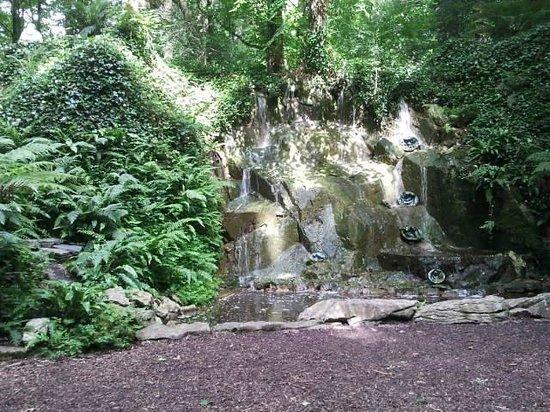 Blarney Castle & Gardens: garden