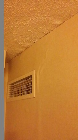 Hilton Chicago/Magnificent Mile Suites: Water damage in corner of room around vent.