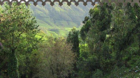 Camelot Resort: Camelot View