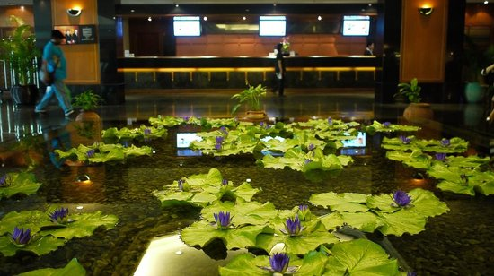 Bangkok Hotel Lotus Sukhumvit : 這片蓮花池就在飯店的大廳,不要懷疑都是真的!