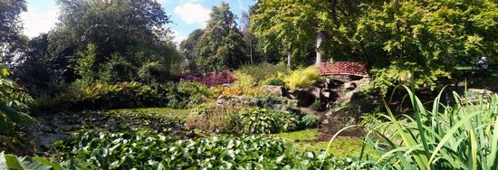 Batsford Arboretum: Very picturesque.