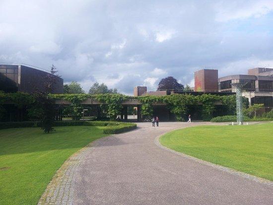 University of Limerick: Вид на кампус