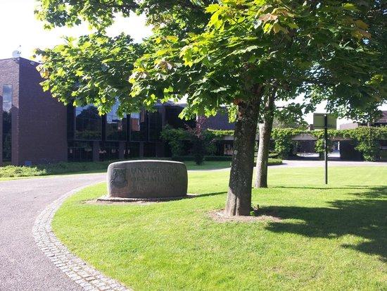 University of Limerick: Вход на территорию Университета