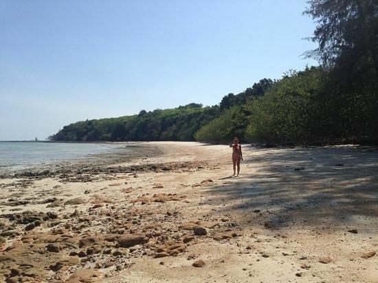 Tenta Nakara: hunting hermit crabs