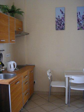 Enigma Hostel & Apartments: kuchnia w apartamencie