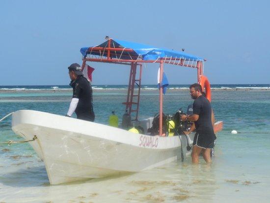 Doctor Dive Costa Maya: squako