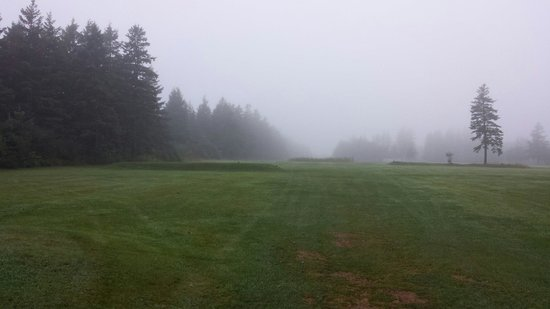 Rustico Resort Golf and Tennis Club: Sixth hole on a foggy day
