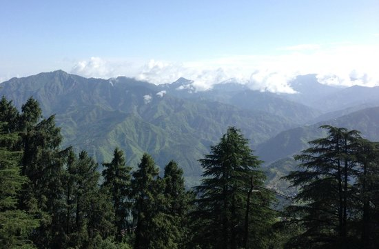 Wildflower Hall, Shimla in the Himalayas: View from room