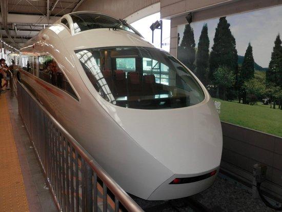 Odakyu Limited Express Romancecar : VSE(50000形)
